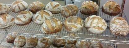 Finished Loaves (cropped)